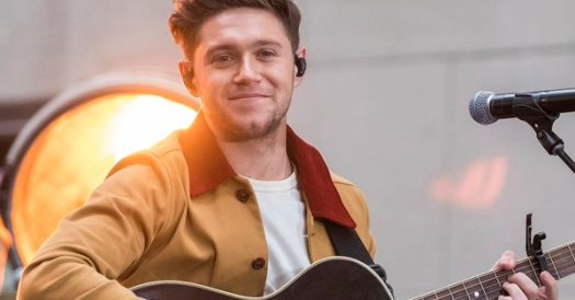 niall horan flicker